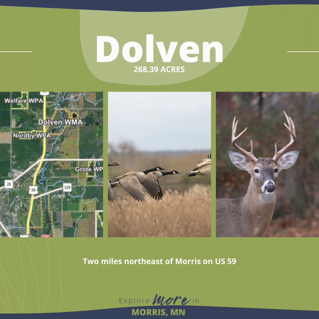 _Morris-Hunting Blog-Dolven (3)