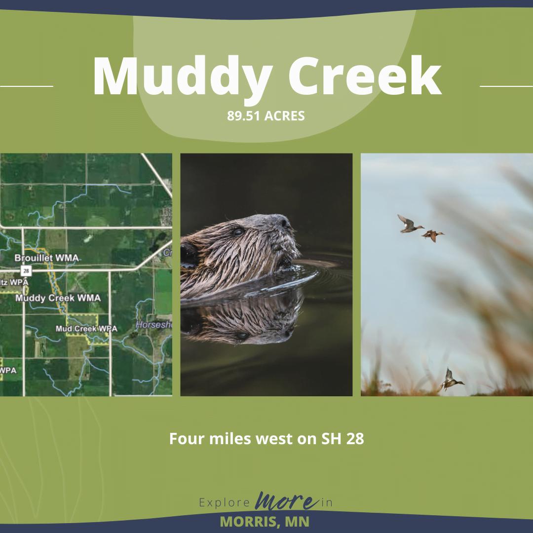 Morris-Hunting Blog-Muddy Creek (3)