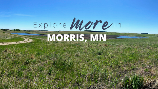 welcome-to-the-city-of-morris