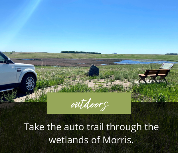 what-to-do-morris-outdoors